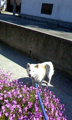 image/2011-05-07T22:28:121